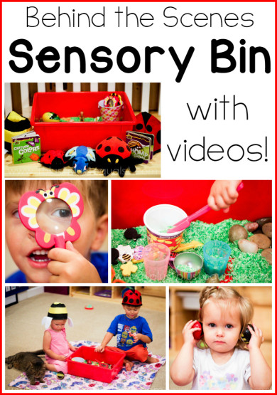 Bug Sensory Bin with Videos