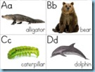 Animal ABC Flashcards 3