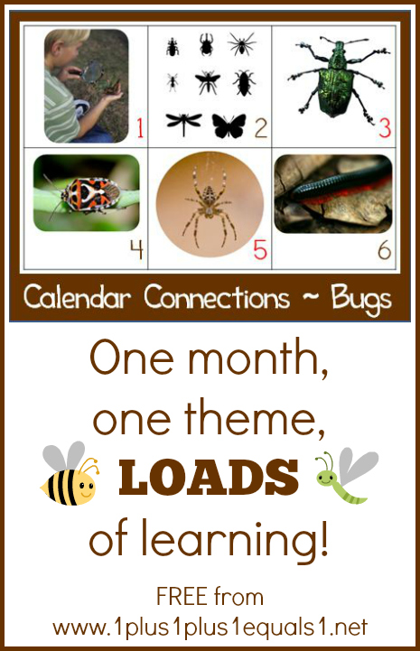 Bug Theme Calendar Connections