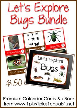 Let's Explore Bugs Button