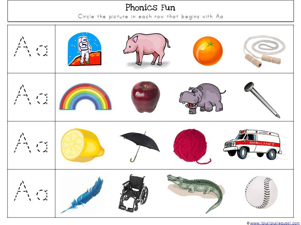 Phonics {circle things that start with the letter}…