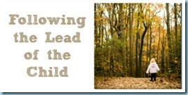 Following-the-Lead-of-the-Child12