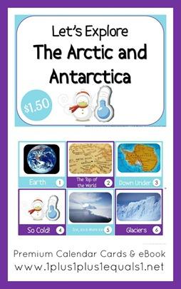 Arctic Bundle