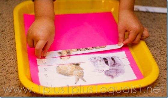 Home Preschool Letter A -8193