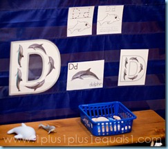 D is for Dolphin