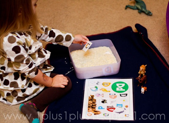 Home Preschool Letter Dd -9719