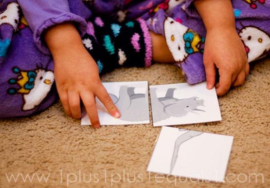 Home Preschool Letter Dd -9766