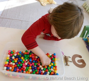 Natural Beach Living Gumball Sensory Bin