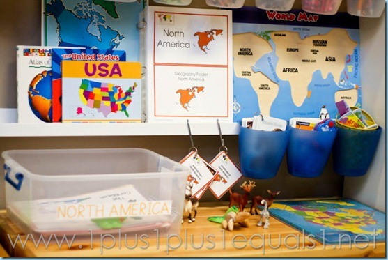 Continent Box North America -3487