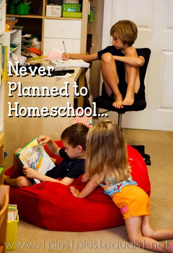 Never Planned to Homeschool