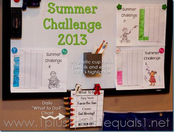 Summer Challenge 2013