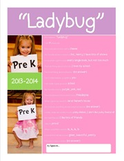 School Questionairre 2013 for Blog Ladybug