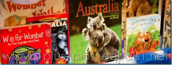 Australia Continent Box -8322