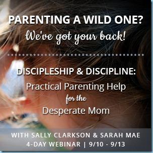Discipleship and Discipline Webinar