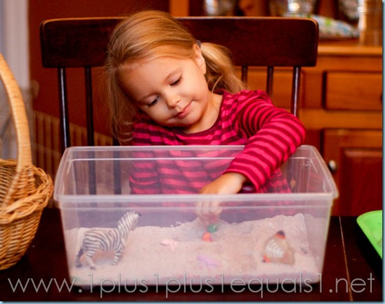 Home Preschool -9474