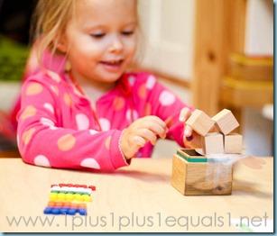 Home Preschool -9501