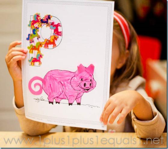 Home Preschool Letter P -9939