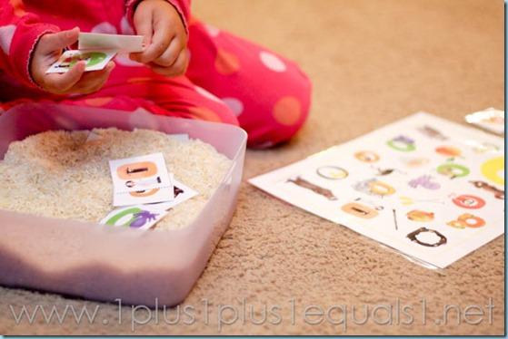 Home Preschool letter o -9519