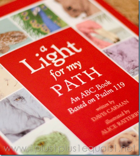 A Light for My Path -9707