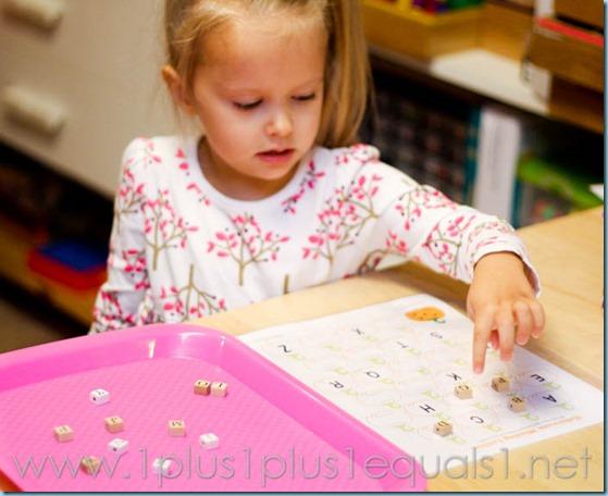 Home Preschool Pumpkins -9728
