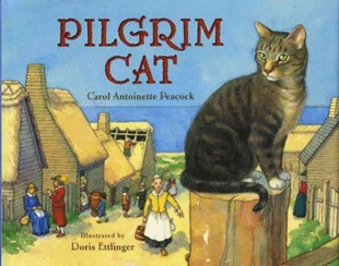 pilgrim-cat