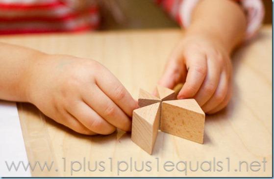 Home Preschool  -3520