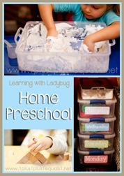 Home Preschool January 2014