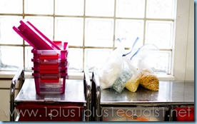 Sensory Bin Supplies-4722