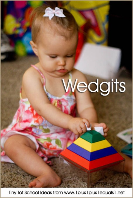Tiny Tot School Wedgits 9-12 months