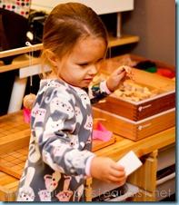 Home Preschool Letter W -5549