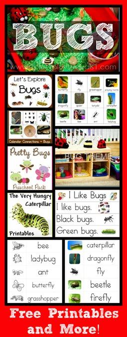 Bug Theme Collection