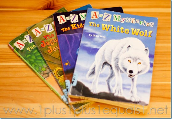 Chapter Books for 2nd Grade Boys
