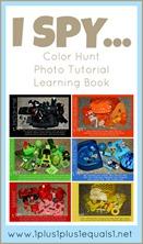 I Spy Color Hunt