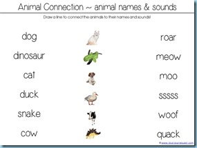 Animal Sounds Matching