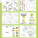 A-Color-of-His-Own-Kindergarten-Literature-Unit-Printables.jpg