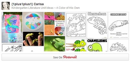 Chameleon Pinterest Board