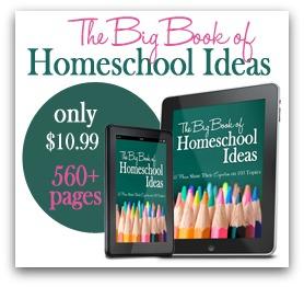 Big-Book-promo-2