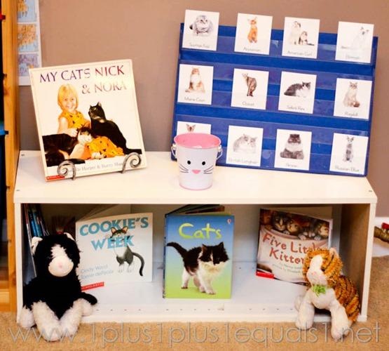 Cat Theme Set Up Kindergarten