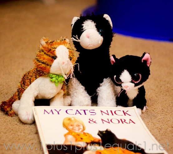 My Cats -9856