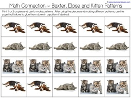 sorting dogs and cats