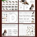 The-Dog-Who-Had-Kittens-Kindergarten-Literature-Unit-Printables.jpg