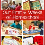 Monthly-Homeschool-Wrap-Up-K-3rd-and-7th-Grade.jpg