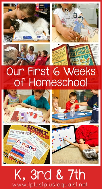 Monthly Homeschool Wrap Up K, 3rd and 7th Grade
