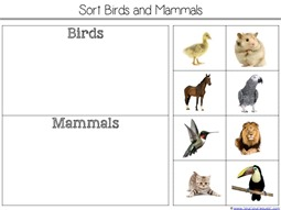 Sorting Birds and Mammals
