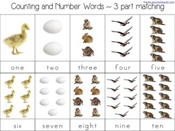 Number Word 3 Part Cards