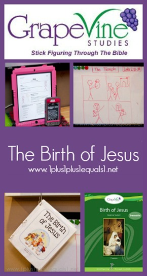Grapevine Bible Studies The Birth of Jesus