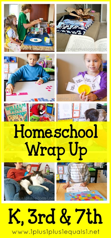 January 2015 Homeschool Wrap Up