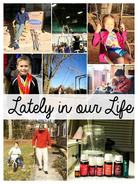 Lately In Our Life February 2015 1