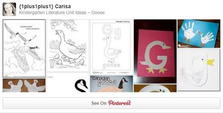 Goose Pinterest Board