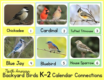 Backyard Birds Calendar Connections for K-2